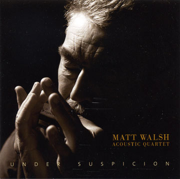 Matt Walsh Acoustic Quartet Under Suspicion