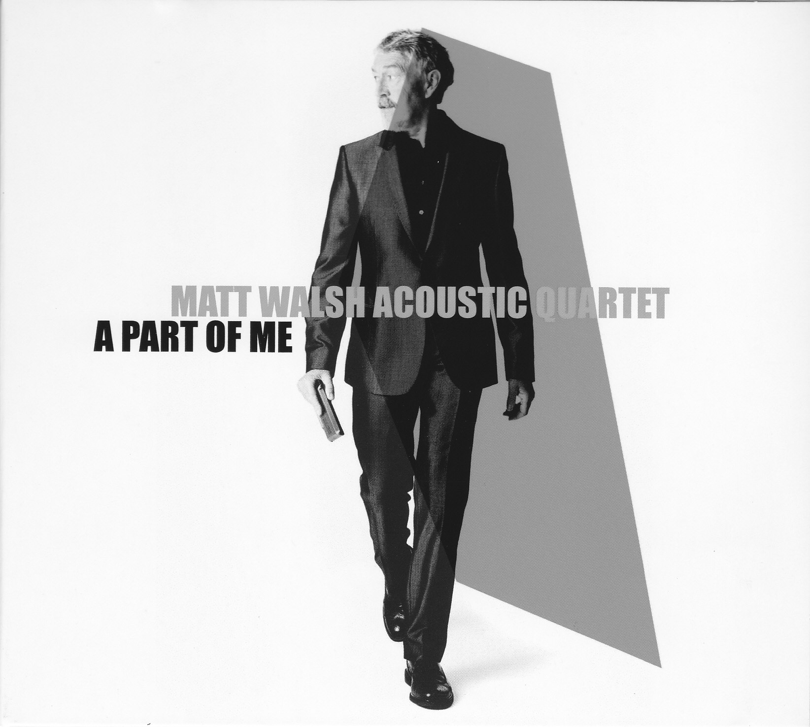 Matt Walsh Acoustic Quartet A Part of Me